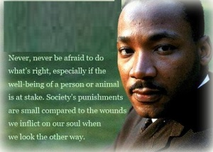 51896-ExcellentQuotations.com-Martin-Luther-King,-Jr.